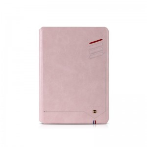 IPad Air2 Case Berlin protective cover pink